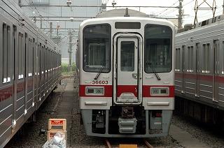 20090725-1.jpg